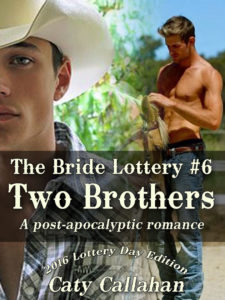 The Bride Lottery #6: Two Brothers by Caty Callahan