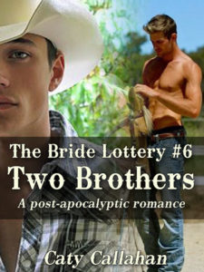 Bride Lottery 6: Two Brothers by Caty Callahan | Buy Now