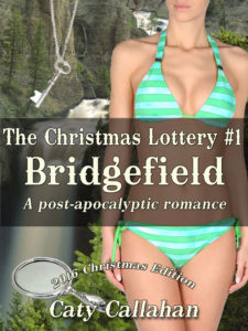 The Christmas Lottery #1: Bridgefield by Caty Callahan
