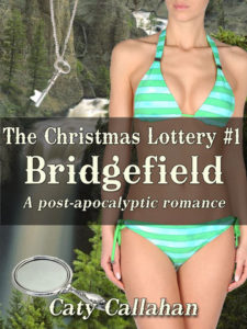 Christmas Lottery 1: Bridgefield by Caty Callahan | Buy Now